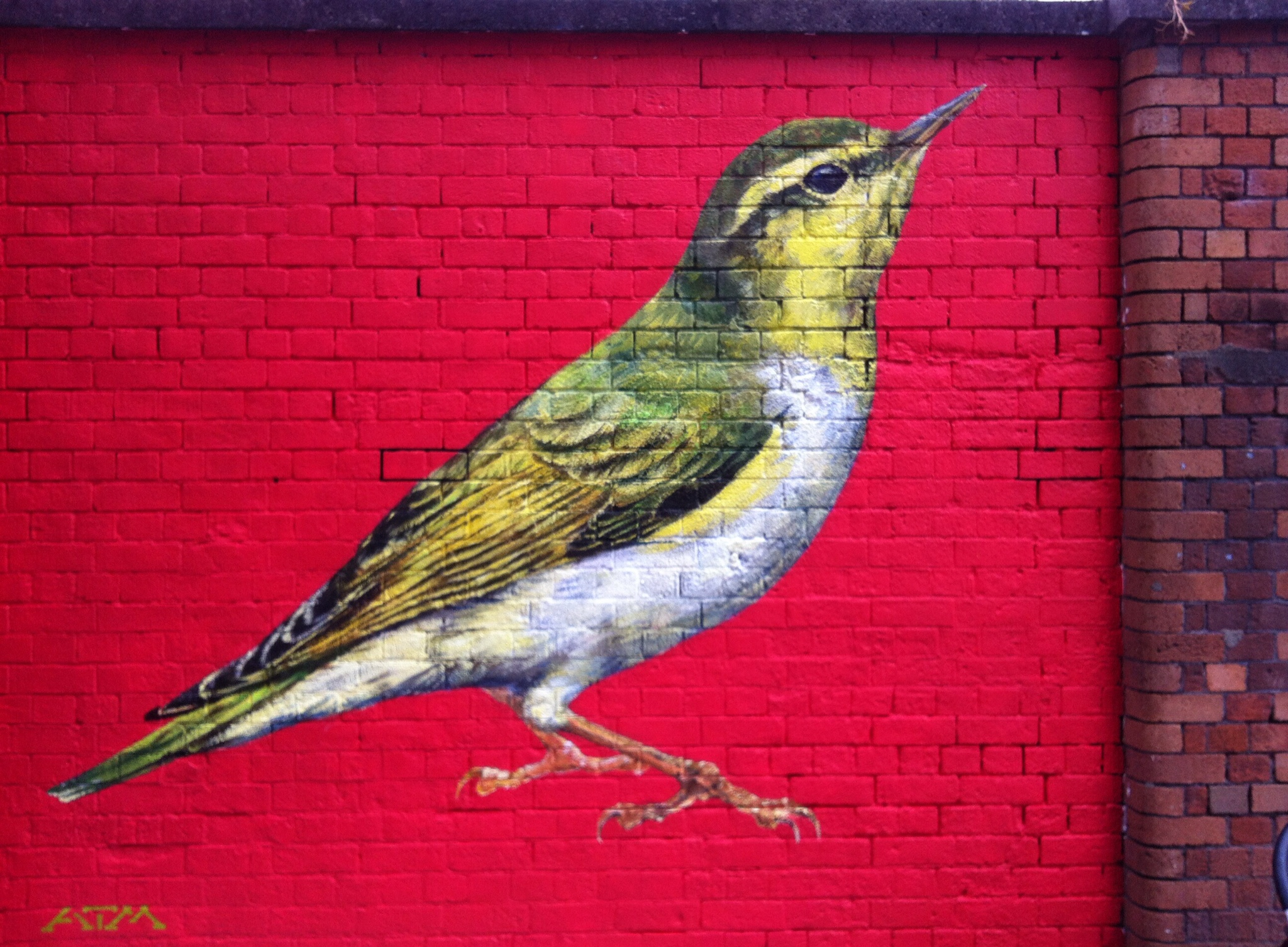 Wood Warbler, part of UpFest street art festival, Bristol.
